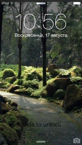 IMG_9192.jpg