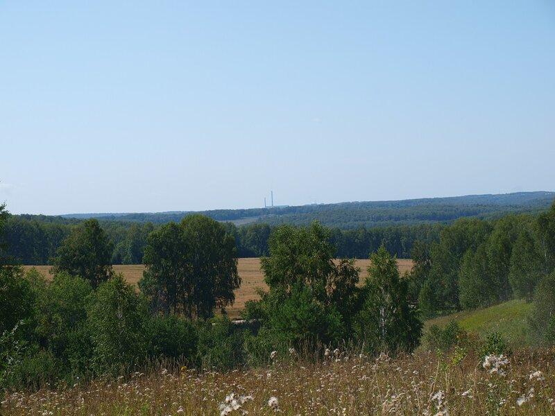 Клубничные поляны и грибные леса в окрестностях Новосибирска. WOW 30 Май 2015 22:59 восемнадцатое