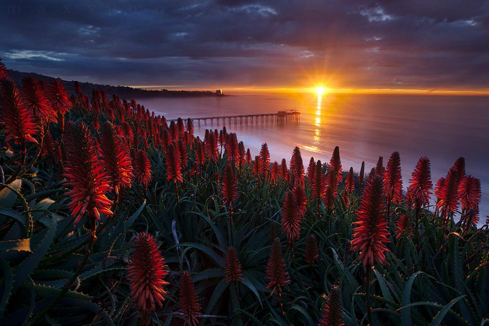 Фотографии прекрасных пейзажей 0 178573 4495a6fd orig