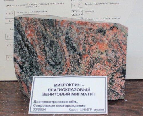 Микроклин - плагиоклазовый венитовый мигматит