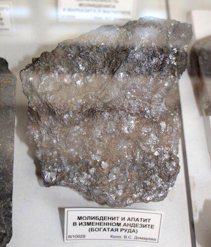 Молибденит и апатит в изменённом андезите (богатая руда)