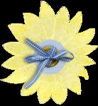 nb_d_flower1.png