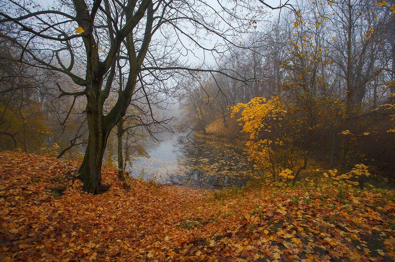 поздней осенью у озера