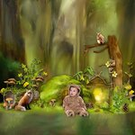 «Deep In The Forest» 0_69141_5cd150c0_S