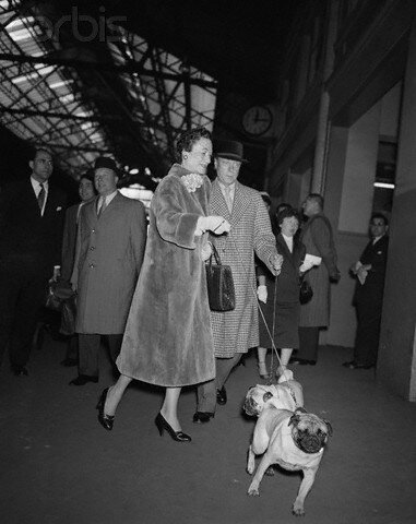 Duke and Duchess of Windsor Walking Their Dogs