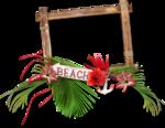 florju_tropicalsea_cluster (7).png