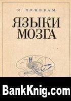 Книга Языки мозга