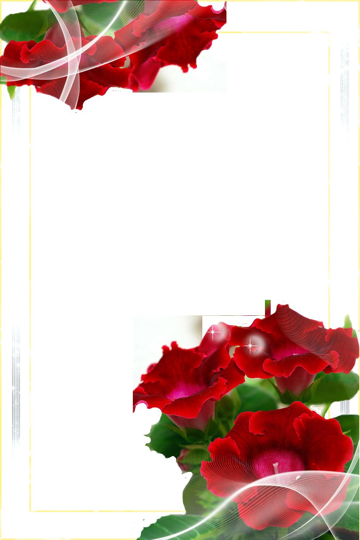 http://img-fotki.yandex.ru/get/4518/41771327.1dc/0_634b6_a7955b13_orig.png
