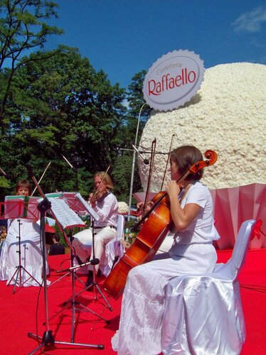 Музыканты перед конфетой Рафаэлло из цветов