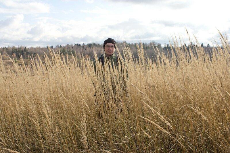 Псковская область, ноябрь, в траве