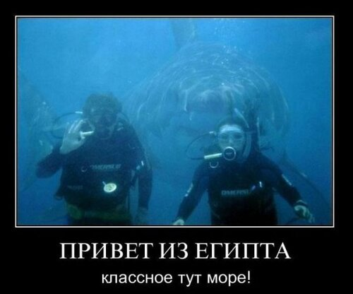 http://img-fotki.yandex.ru/get/4518/82036579.0/0_70a70_2e935a8f_L.jpg