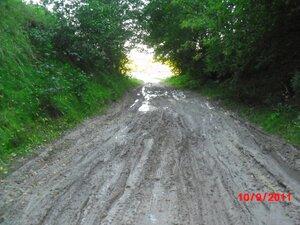 Это только начало осени - дорога на улицу Поповка.