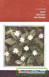 Книга Мир лесных растений.