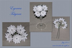 http://img-fotki.yandex.ru/get/4519/69211031.f/0_a2192_cab80baf_M.jpg