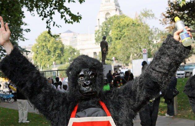 Большой бег горилл