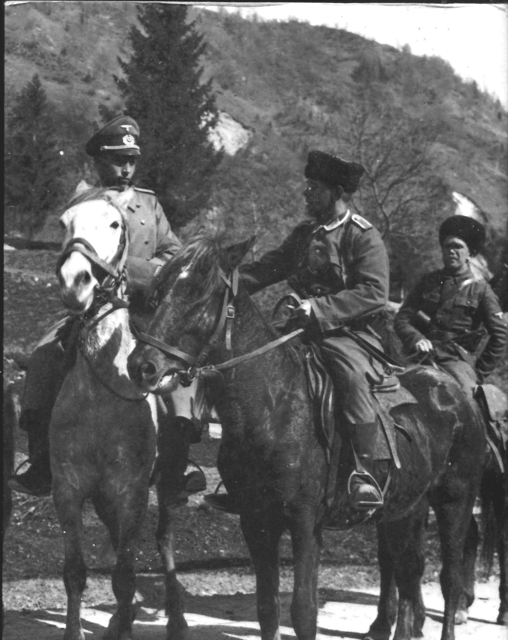 Kaukasen2.jpg