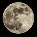 2016-03-23: Полнолуние, Юпитер и его спутники