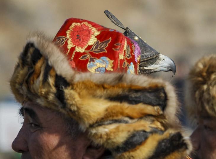 2. Традиции охоты с ловчими птицами существуют несколько сотен лет. Мастера передают секреты из поко