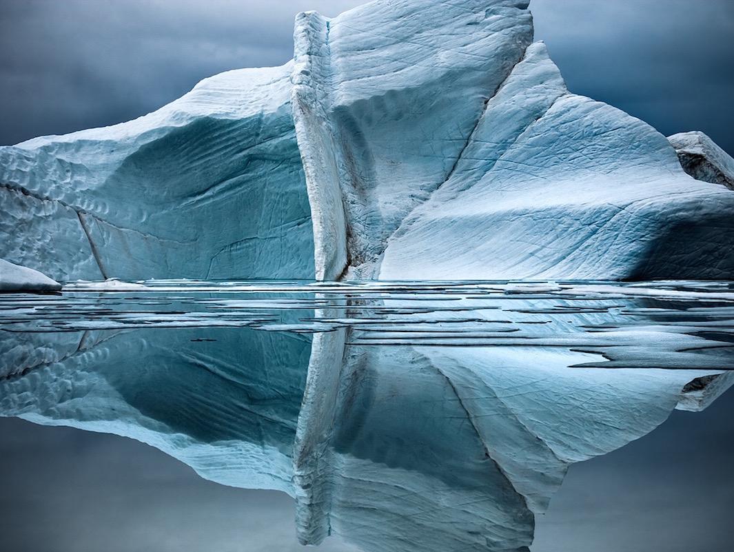 Останки молодого медведя, погибшего от голода. Быстрое отступление морского льда, где белые медведи
