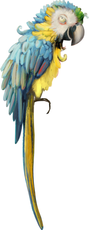 emeto_TheScaryPirates_parrot 2.png