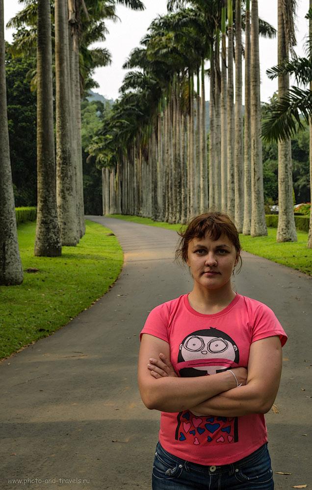 Фотография 21. Отзывы об экскурсии в ботанический парк Перадения в Канди. Отдых на Шри-Ланке в мае.