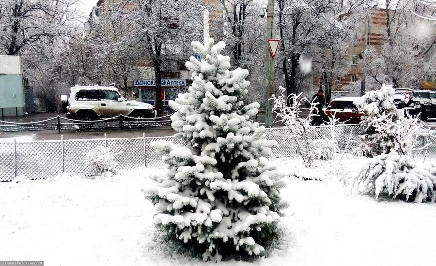Ростов-на-Дону 19.03.16.