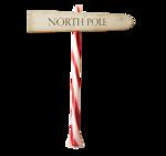 Северный полюс (131)