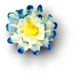 ldavi-heartwindow-porcelainflower12.png