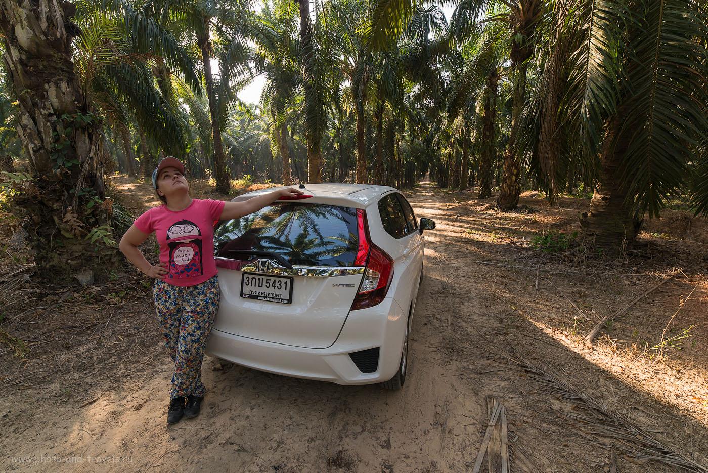 Фото 11. Эту машину мы арендовали и проехали по Таиланду 2500 км. Отчет о самостоятельной экскурсии к Изумрудному озеру на Краби (Ростовой портрет, снятый на полнокадровый фотоаппаратNikonD610 и широкоугольный объективSamyang14/2.8. Параметры съемки: 250, 14, 8.0, 1/250)