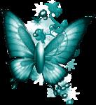WishingonaStarr_I believe in fairies0058.png