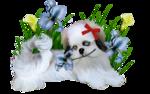 Собачки (151).jpg