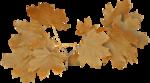 Collab_Shabby_autumn_el (49).png