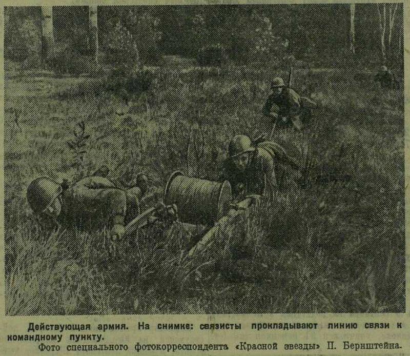 как русские немцев били, потери немцев на Восточном фронте, красноармеец ВОВ, Красная Армия, смерть немецким оккупантам, красноармеец 1941
