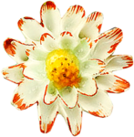 ldavi-heartwindow-porcelainflower7.png
