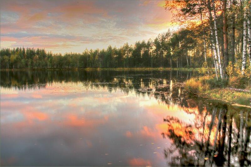 Лесное озеро на закате