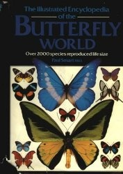 Книга The Illustrated Encyclopedia of the Butterfly World