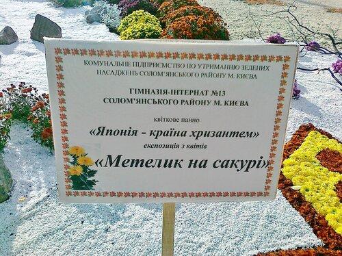 """Киев   Выставка цветов """"Осенний бал хризантем"""" на Певческом поле"""