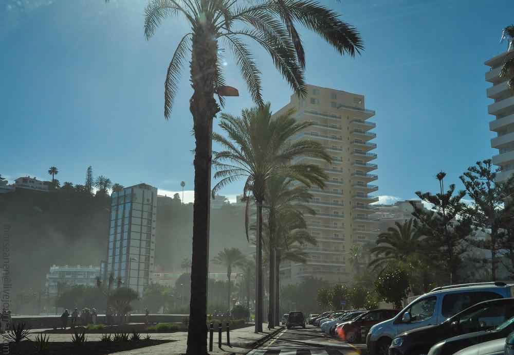 Rosario-(3).jpg