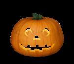 волшебная осень (119)