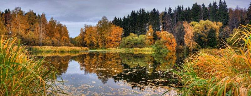 Autumn landscape 01