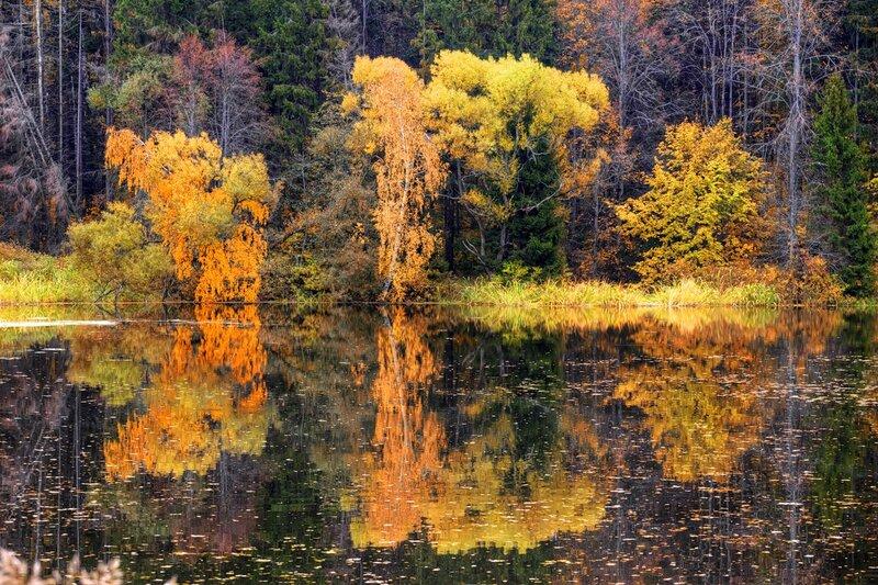 Autumn landscape 03