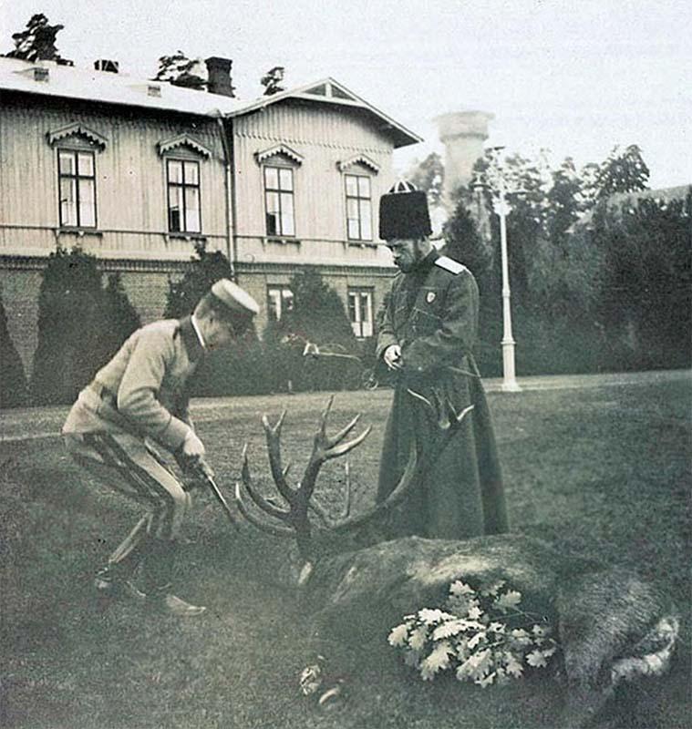 Беловежская пуща. По-видимому сам Царь и завалил этого неслабого самца-оленя