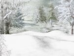 R11 - Winter Time - Back 027.jpg