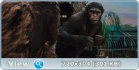 Восстание планеты обезьян / Rise of the Planet of the Apes (2011) BD Remux + BDRip / 1080p + 720p + DVD5 + HDRip