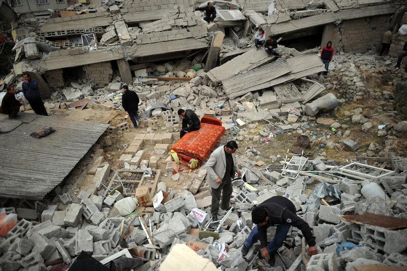 папоротник одно картинки землетрясение в турции работу