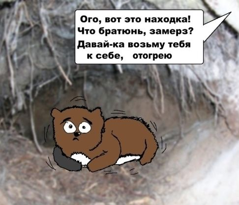 http://img-fotki.yandex.ru/get/4523/130422193.4b/0_6b702_29f15298_orig