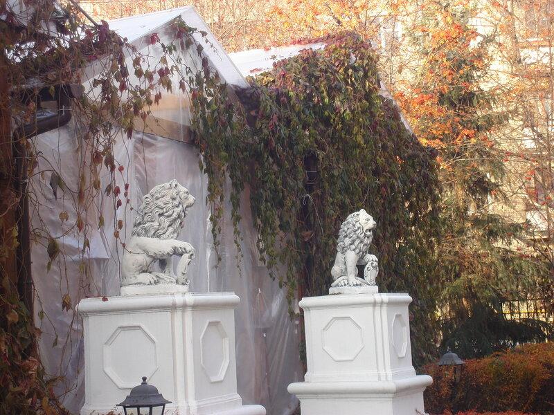 львы напротив Дома-голубятни