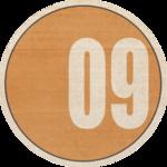 8_mira_BonVoyageDates_yearorange (10).png