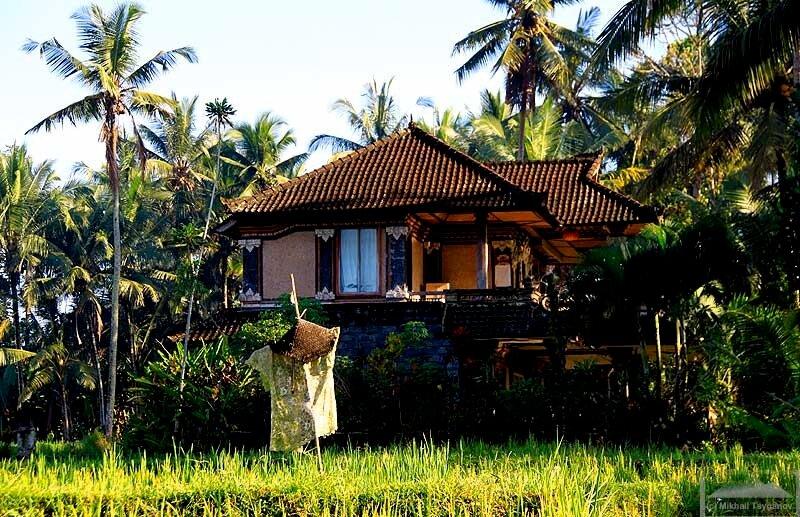 Дома Убуда