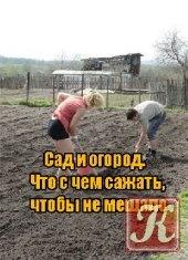 Книга Сад и огород. Что с чем сажать